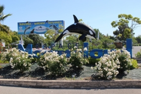SNELAC annual meeting was held on June 5th and 6th at Espace Marineland, one of the largest attraction complexes of the country, located in Antibes on the French Riviera.